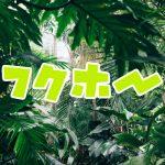 大阪市浪速区の街金フクホーのアイキャッチ