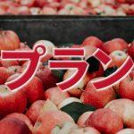 大阪街金プランのアイキャッチ