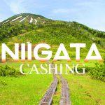 新潟県の貸金業者アイキャッチ